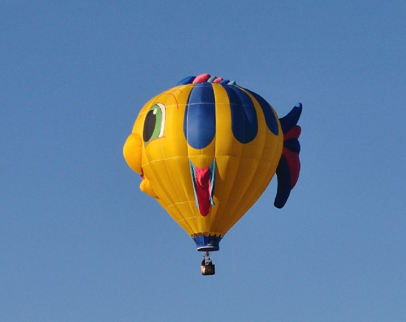 A bunch of hot air warning lots of pics for Flying fish balloon